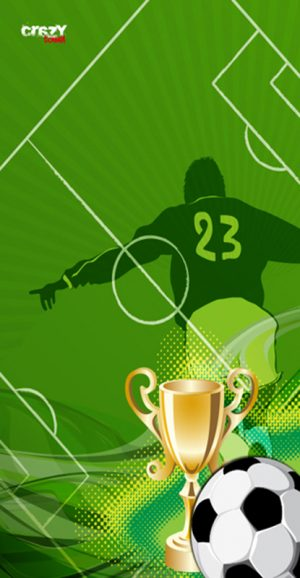 1157 Toalla futbol cup